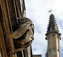 Bearded gargoyle, Magdalen College by buttonpresser