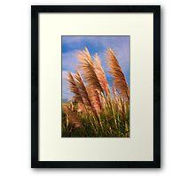 Long tall fluffy grass as pseudo oil painting Framed Print