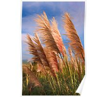 Long tall fluffy grass as pseudo oil painting Poster