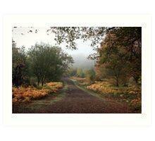 Misty Road of Autumn Art Print