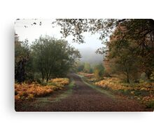 Misty Road of Autumn Canvas Print