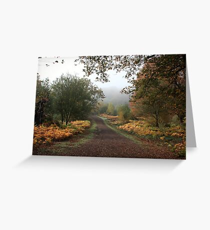 Misty Road of Autumn Greeting Card