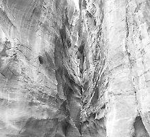Siq at Petra by dimpdhab