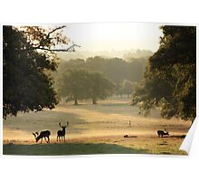At the Deer Sanctuary Poster