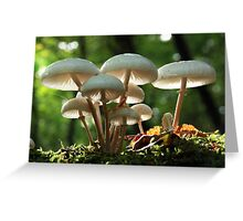 Shroomville Greeting Card