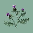 Thistle on Sage green  by ThistleandFox