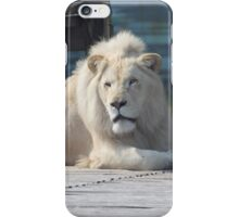 White lion iPhone Case/Skin