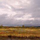 Tupper Lake by Jeannette Sheehy
