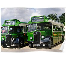 A pair of green vintage buses Poster