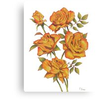 Orange roses on white Canvas Print