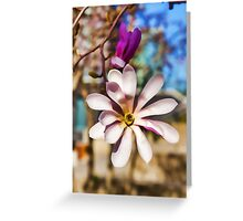 Magnolia – Impressions Of Spring Greeting Card