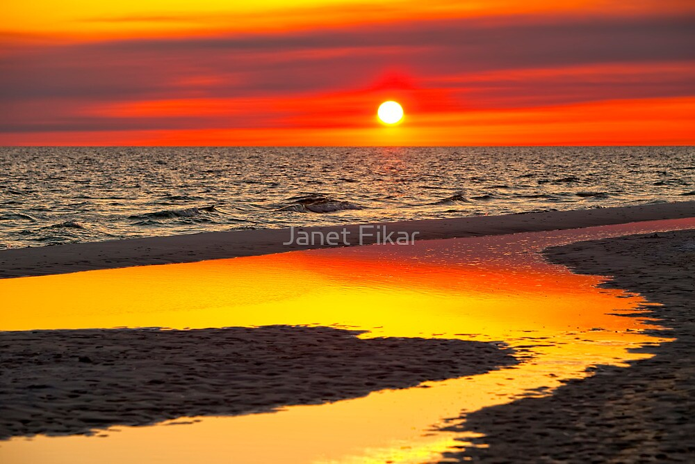 Reflections by Janet Fikar