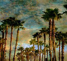 Tropical Dawning by Stephen Warren