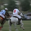 Polo by Jo McGowan