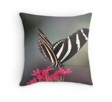 Black & white Zebra longwing (Heliconius Charitonius)  Throw Pillow
