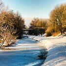Frozen Scotland by RayDevlin