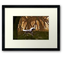 Unicorn in an enchanted forest Framed Print