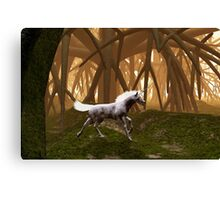 Unicorn in an enchanted forest Canvas Print