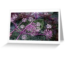 Purple Berries-Available As Art Prints-Mugs,Cases,Duvets,T Shirts,Stickers,etc Greeting Card