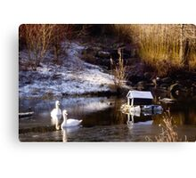 A Winters Morn Canvas Print