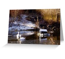 A Winters Morn Greeting Card