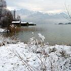 Lake Kochelsee Winter 2009/10 by Daidalos