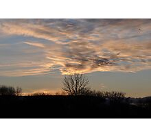 Whipped Sky Photographic Print