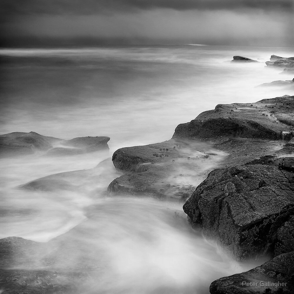 The Storm Gathers by Peter Gallagher