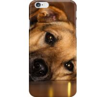 Labrasation dog - (Labrador & Alsatian) ....Yeah? iPhone Case/Skin