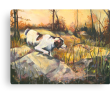 On Point - Late Afternoon Hunting Canvas Print