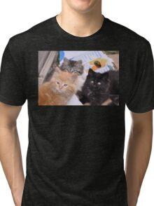A Tale of Three Kittens Tri-blend T-Shirt