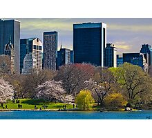 Springtime Arrives In Central Park, New York, USA Photographic Print