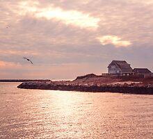 My New England by JoeGeraci