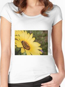 Sunshine Flower Women's Fitted Scoop T-Shirt