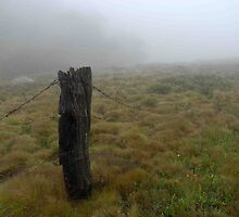 Old fence post in the mist... by Richard  Stanley