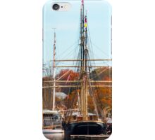 Mystic Seaport Scenery iPhone Case/Skin