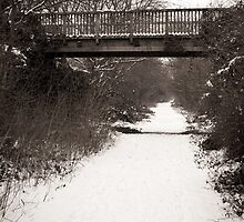 Wooden bridge over snow covered path by Squawk