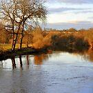 River Run  by Jason Kiely
