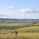 Coolah Valley NSW by Julie Sherlock