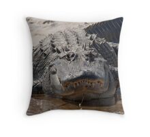 You like my overbite ?  Throw Pillow