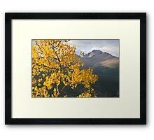 View of Longs Peak Framed Print