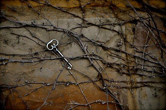 skeleton key in vine by HeatherMScholl