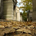 Pere LaChaise by Stephanie Runge