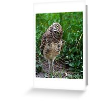 YOU AGAIN? Greeting Card