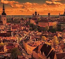 Estonia. Tallinn. View from the top of St. Olaf's Church. Sunset. by vadim19