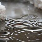 Drip Drop by Casey Voss