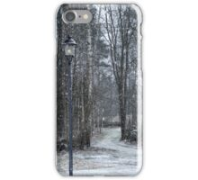Snow-time iPhone Case/Skin