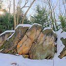 Cuyahoga Valley National Park / Layers by Mark Bolen