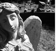 Silent Angel, Black and White by Allise Noble