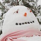 Winter Snowman by cshphotos